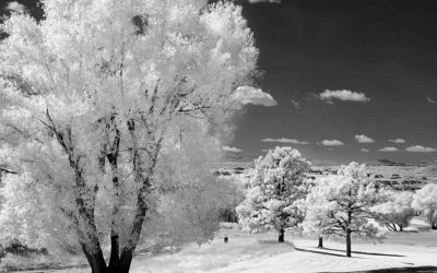 Using Channel Mixer for Monochrome Infrared