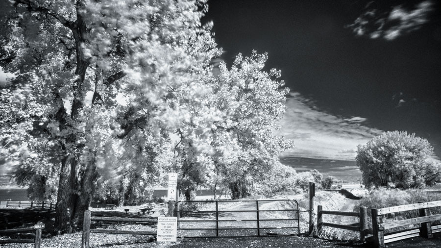Capturing Infrared Photography in HDR